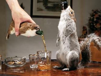Pivní zajímavosti{lang}Beer attractions
